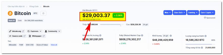 giá BTC bitcoin 2021